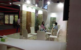 Yunfo Fair 2013 (4)